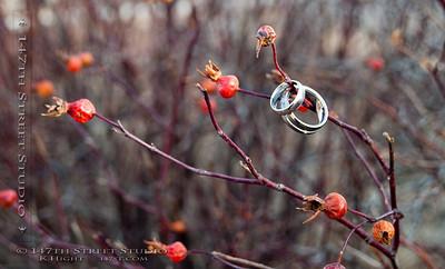 Wedding Rings and Rose Hips in The Iowa Great Lakes - Spirit Lake Iowa Photographer