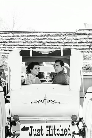 Bride and Groom in Horse and Carriage | Rayan Anastor Photography | Michigan Wedding Photographer bw edit