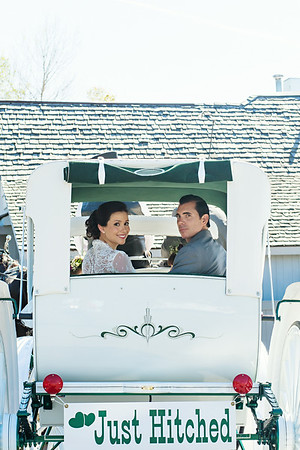 Bride and Groom in Horse and Carriage | Rayan Anastor Photography | Michigan Wedding Photographer edit