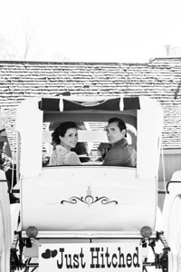 Bride and Groom in Horse and Carriage | Rayan Anastor Photography | Michigan Wedding Photographer bw