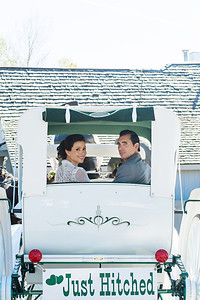 Bride and Groom in Horse and Carriage | Rayan Anastor Photography | Michigan Wedding Photographer