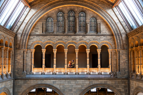 Couple Embrace at the Natural History Museum