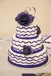 Michelle & Jeffery Wedding ~ February 7, 2015~0004