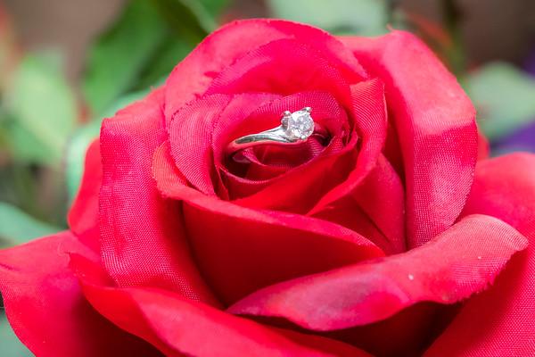 Mandi & Ben Wedding_0005