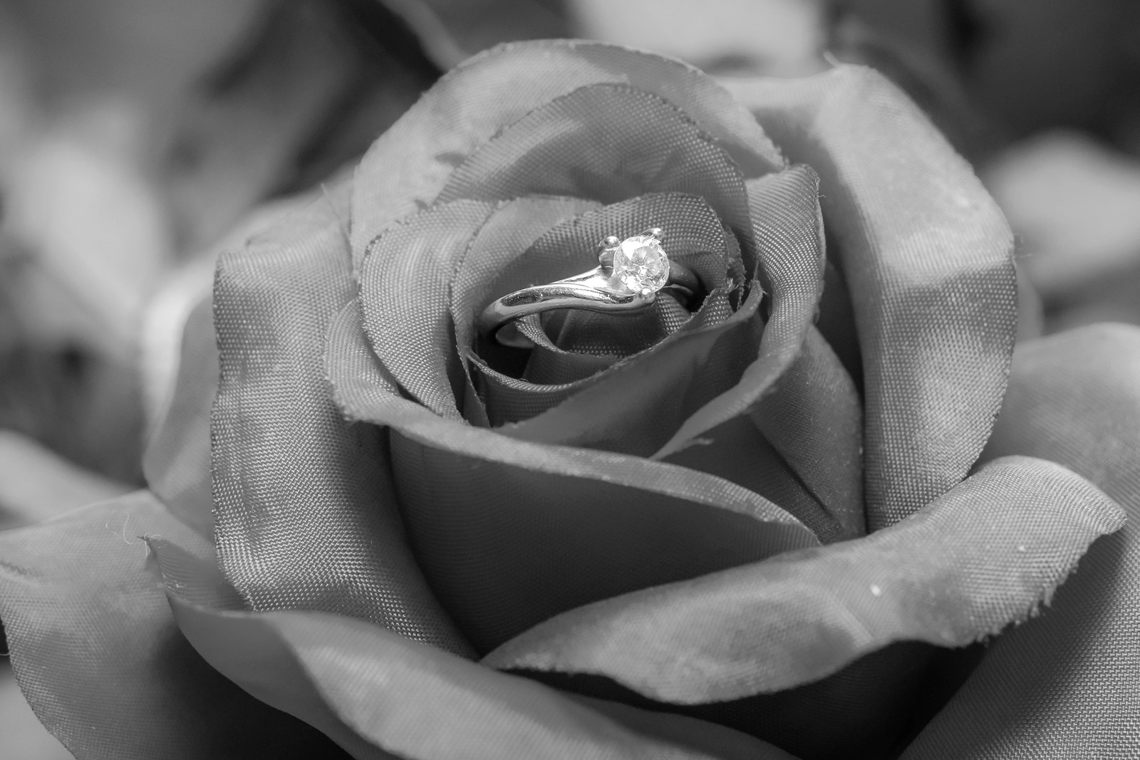 Mandi & Ben Wedding_0005-BW