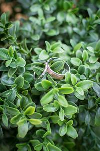 stott-freitas_wedding_091618_0002
