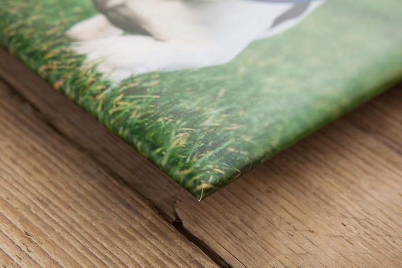 Frames, Canvas, Acrylic and Glacier Blocks: Print Wrap Canvas 6