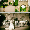 Horse drawn carriages for wedding hire in Cardiff and Newport Gwent