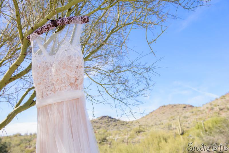 Stephanie-Zach-Studio - 616 Wedding Photography - Phoenix Wedding Photographers