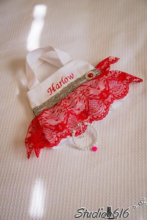 2015-11-14 Mallory-Ryan- Studio 616 Phoenix Wedding Photography - phoenix wedding photographers
