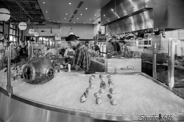 2016-07-23 Dede-Stuart - Studio 616 Photography-3-2