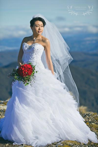 Wellington bridal photo shoot