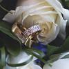Jan_Murray_wedding_Ruakaka_Beach_Northland