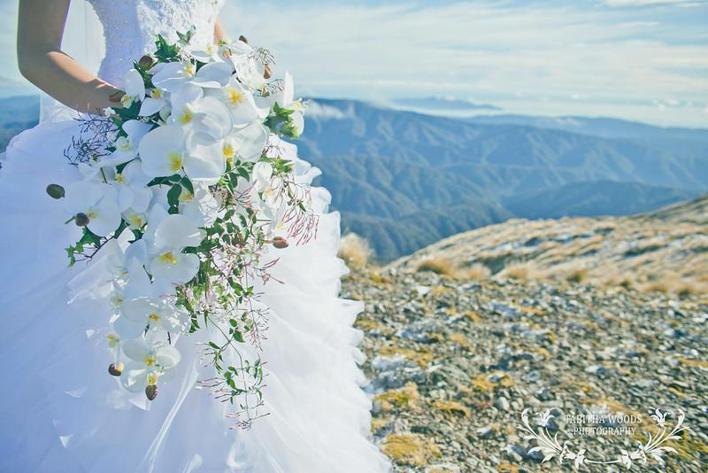 Wedding photography at Mount Hector-Tararuas
