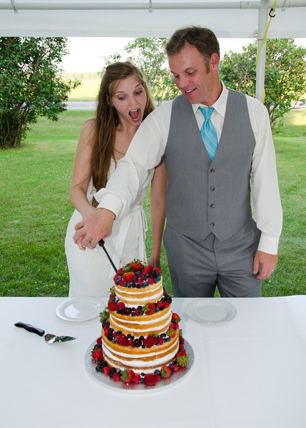 Anderson wedding cake cutting