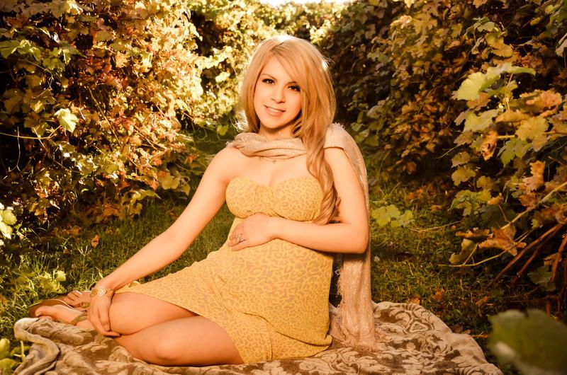 Maternity Portrait Phoenix AZ - Studio 616 Photography