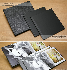 Engagement Albums 10x10 Starting at $175.00