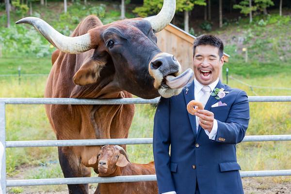 Brattleboro-Retreat-Farm-Wedding-Photography-Brattleboro-VT-282