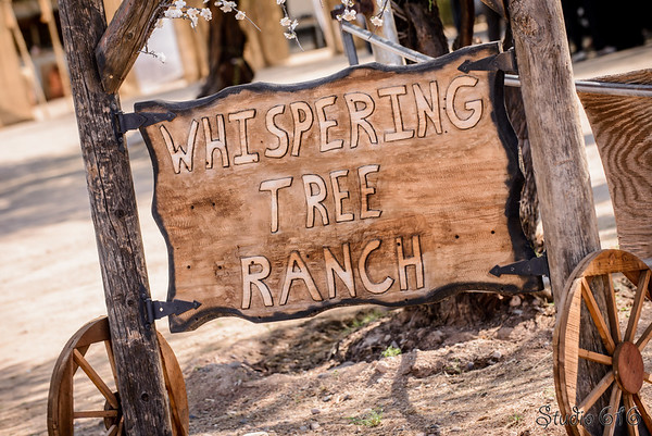 Whispering Tree Ranch - Studio 616 Photography