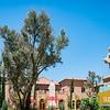 Allegretto Vineyard Resort_012