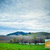 Greengate Ranch & Vineyard Marketing_001