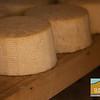 Rinconada Dairy_025