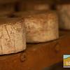 Rinconada Dairy_024