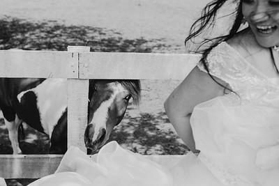 Wedding Yamileth & Orlando