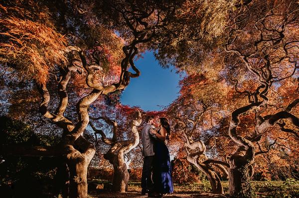 Sarah and Nicholas - 11.4.16 - Harkness Park