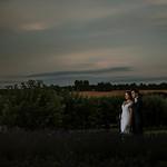 Samantha Hook Photography's photo