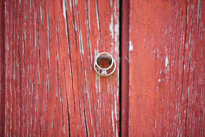 ring-red-barn-family-farm-wisconsin-wedding-kate-timbers-photography-4136