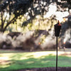 cotton-dock-torch-smoke-boone-hall-plantation-charleston-sc-lowcountry-wedding-kate-timbers-photography-8116