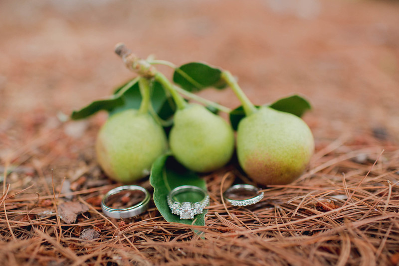 ring-pear-stone-manor-middletown-md-wedding-kate-timbers-photography-7126
