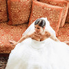 bride-portrait-mendenhall-chadds-ford-pa-wedding-kate-timbers-photography-4888