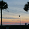 sunset-shem-creek-palmetto-tree-charleston-sc-kate-timbers-photography-1040
