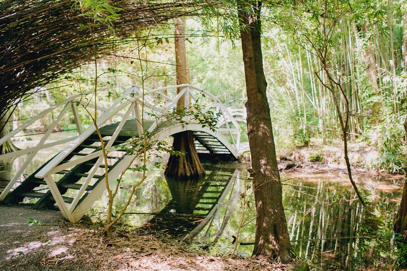 white-bridge-magnolia-plantation-charleston-sc-kate-timbers-wedding-photography-1469