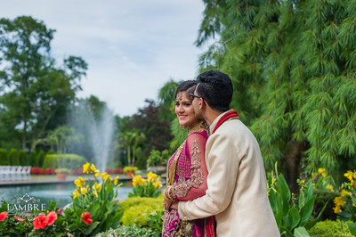 Amir Hiba wedding
