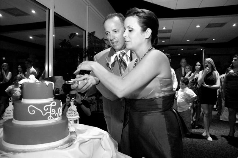 Ileana Wedding