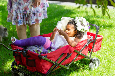 Essex-Burlington-VT Wedding Photography-17