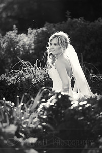 Stacy Bridals 18bw