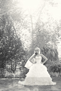 Stacy Bridals 08bw