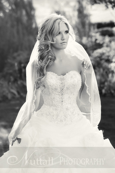 Stacy Bridals 03bw