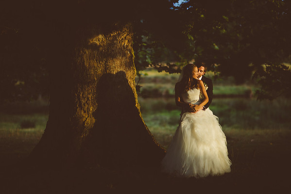 Tabbi & Joe / Powderham Castle