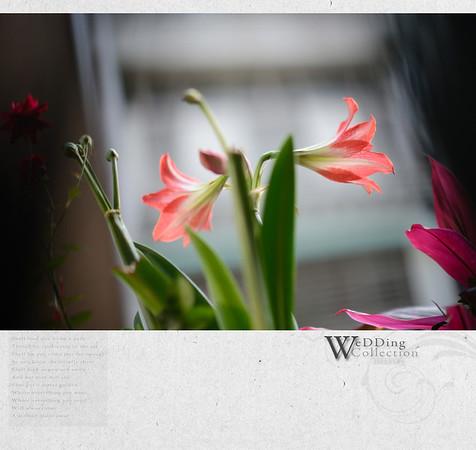 2012.05.05 Weddig Date