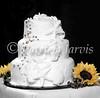y-cake-79C7113