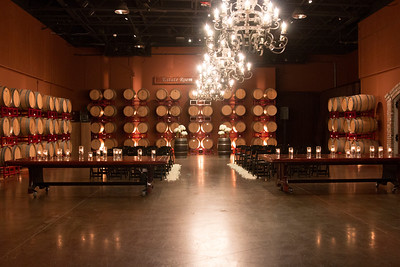 Palm Event Center in the Vineyards Rubino Estates Winery_20160107_0126