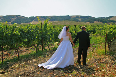 The Beauty of the Wine County