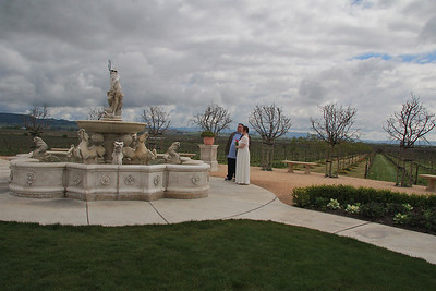 The Fountain and Vineyards