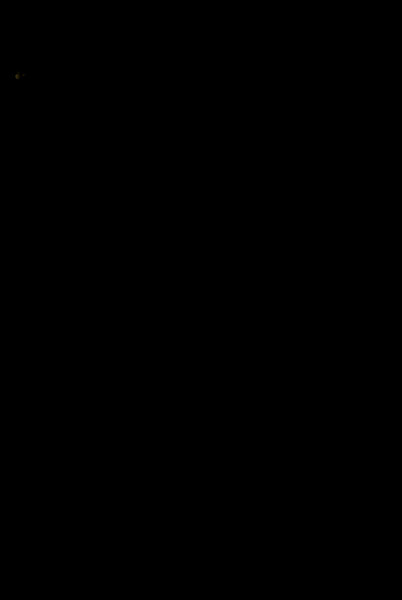 DSC_2152