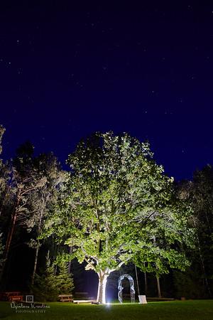 Kāzu svinības Laumu dabas parkā